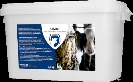 HAC / EXCELLENT - KALVITAL Mittel gegen Verdauungsstörungen für Rinder