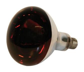 Infrarotbirnen 150 Watt