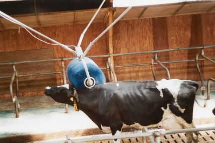 VINK - Elektrisch Rotierende Viehbürste 220V, Kratzbürste, Schwingbürste