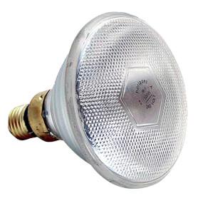 POLNET - Infrarotlampe, weiß, Typ PAR,  175 W