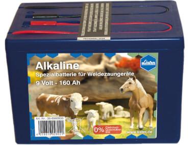 Alkaline Batterie 9 V / 160 Ah